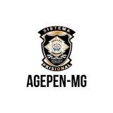 Resumos Para O Concurso Agente Penitenciário De Minas Gerais