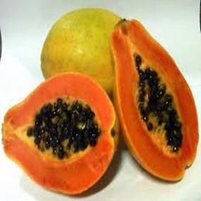 50 Semente Mamão Anão Do Amazonas Papaya