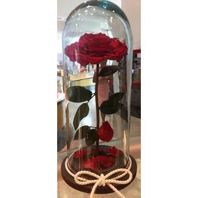 Rosas Eternas Bella Y Bestia Grandes
