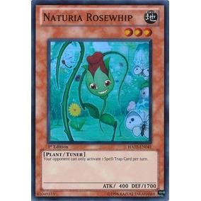 Naturia Rosewhip-yugioh