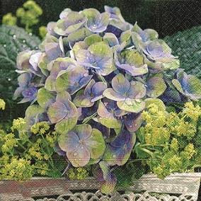 Pacote Com 20 Guardanapos Romantic Flowerage Paper Design Em