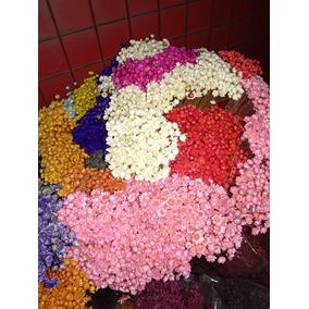 Flores Secas Siemprevivas Artesanias En Mercado Libre Argentina