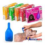 Pipeta Antipulgas Para Perros Miniatura Dominal 1 A 4kg