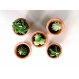 Mini Velas Artesanales En Forma De Cactus