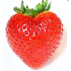 300 Sementes De Morango Pronta Entrega - Gigante Vermelho