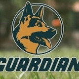 Perrarina Guardian Saco De 25 Kg