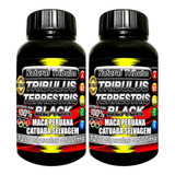 2 Tribulus Terrestris Black 100% Maca Peruana Catuaba Selva