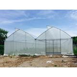 Invernadero Greenhouse Rimex De 15 X 135 Metros 2025 M2
