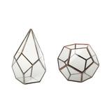 2 Pieces Vidro Terrário Geométrico Boxes Mesa Plantas Sucule