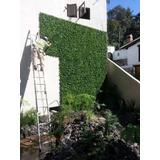 Muro Verde, Follaje Artificial Sintetico 60*40 Cm 10pzas