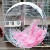 Globo Burbuja Transparente Pvc Englobado 10