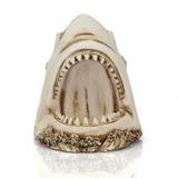 3d Visual Tubarão Crânio Resina Simulação Peixe Osso Fóssil