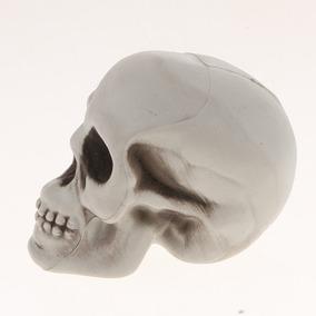 Plástico Cráneo Cabeza Estatuilla Animal Esqueleto Modelo