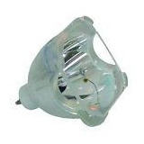 Oem Bp47-00023a/bp4700023a Replacement Lamp For Samsung Tv (