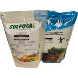 Kit Bordasul Calda Bordalesa + Calda Sulfocal Pct 2 Kg