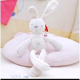 Conejo Sonajero Bebé