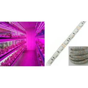 Fita Led Full Spectrum Indoor Grow Led Lampada Para Cultivo