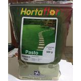 Semilla Para Pasto De Sombra 500 Gramos (envío Gratis)
