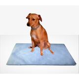 Jornal Pet Para Cachorro 500 Unid, Sem Impressão, Reciclado,tapete Papel Reciclado Cinza, Boa Absorção Top + Brinde