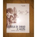 Libro Escuela De Dibujo De Anatomía