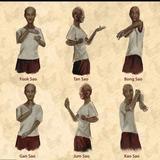 Video Aula V.1 - A Formação Do Siu Lin Tao Wing Chun Kung Fu