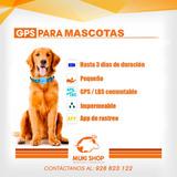 Gps Mascotas