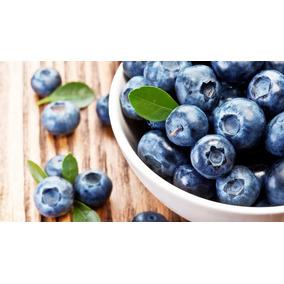 *** Semente Blueberry ***
