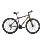 Bicicleta Aro 29 Free Action Flexus 1.0 21v 04-047.048