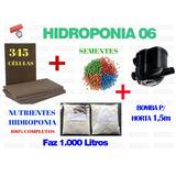 Kit Espuma Fenólica Hidroponia Alface Nutriente Semente 6