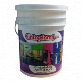 Latex Profesional Frentes Cintoplom Cintolatex 20 Antihongo