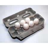 Cajita O Estuche Para Huevos 1 Docena (maples De Huevos)