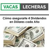 Como Asegurarte 4 Dividendos En Dólares Por Año (3 Informes)