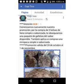 Heno Con Aromaticas Y Galletas Para Roedores Y Conejos