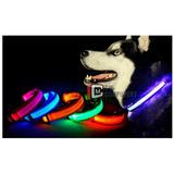 Collar Para Perros Gatos Ajustable Con Luces Led 3 Modos Luz