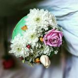 Flores Naturales Para Tortas En Mercado Libre Argentina