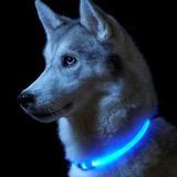 Collar Con Luz Led Para Mascotas Perro