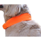Dog Not Gone Visibility Products Cobertor De Collar, Estilo