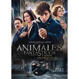 Dvd - Animales Fantasticos Y Donde Encontrarlos