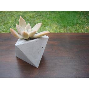 Maceta De Cemento Con Crasas O Cactus, Ideal Souvenir!