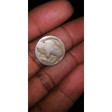 Moneda Five Cent De Bufallo