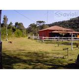 Chácara Para Venda Em Santa Rita De Caldas, Santa Rita De Caldas, 3 Dormitórios, 2 Banheiros, 2 Vagas - Ch403