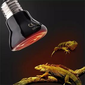 Lâmpada Aquecimento Cerâmica 220v 50w Noturna Reptil Ovos