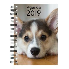 Agenda Personalizada 2019 - Laminação Brilho
