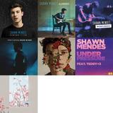 Shawn Mendes (discografia)