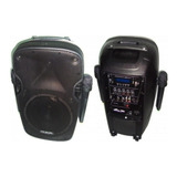 Parlante Potenciado Gbr 300w 2 Microfonos Powered 1090 *11