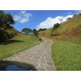Sitio De 65000m2 - Tingua - Distrito Sacra Familia