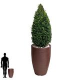 1 Vaso Jardim Sintética Banco Madeira Deck Vime Piso R 60x38
