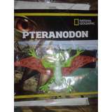 Coleccion Dinosaurios Peteranodon Nro 15 Nat Geo Clarin