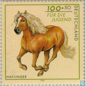 Selo Cavalo Stanliq30 Zignauko