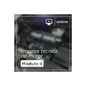 Limpeza Técnica De Motor - Treinamento Online